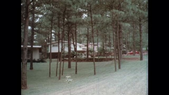 UNITED STATES: 1960s: view of homes through trees. Leaflets about fallout preparation.