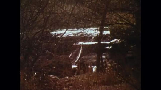 UNITED STATES: 1970s: waterfall in woods. View through trees. Helicopter flies over forest. Man in helicopter