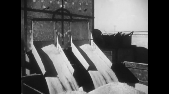 1950s: Grain pours from silo. Workers sift grain. Men tie cargo by ship. Crane lifts cargo. Machine gathers cotton.