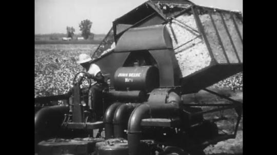 1950s: Machine pours out cotton. Long shot of factory. Men haul cotton. Men unload cotton. Officer talking.
