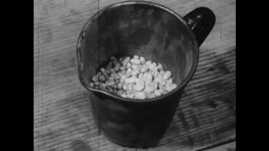 1950s: UNITED STATES: bucket empties of grains. Man takes cup of grain. Men at meeting.