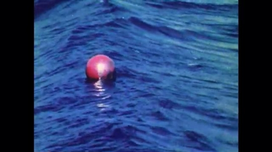 1970s: UNITED STATES: red buoy in waves. Model of red ball in wave tank. Animation of wave cycle.