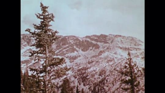1970s: 1970s: pine tree forests grow around lakes on snowy hills and mountains in country.