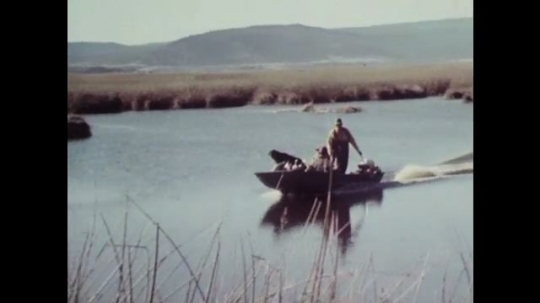 1980s: Pan of boat traveling down river. Tracking shot down river. Birds flying. Close up of man. Birds flying.