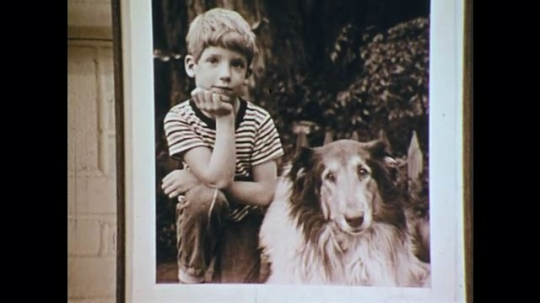 1970s: UNITED STATES: photo of dog and boy. Children gather for photo. Children eats foods. Boy smiles.