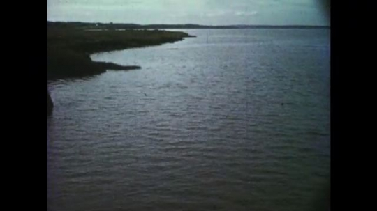 1950s: Landscape of water against grassy banks. Water covers grass. Seaweed caught on wire and wooden pole. Muddy land