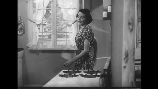 1950s: Lady walks into kitchen, Lady places pan on stove. Mountainous terrain