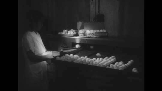 1950s: Lady watches eggs filter into tray. Hands pick up eggs, Machine moves eggs. Hands fill box with eggs. Eggs in shop