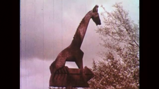1950s: Signed carved to look like a giraffe. Giraffe walks to fence, eats leaves from tree.