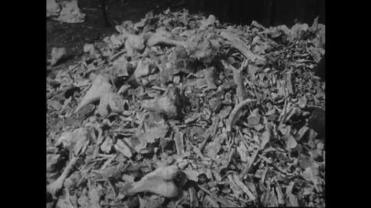 Europe 1940s: bones on ground. Statue of Jesus on cross. Bible on ground.