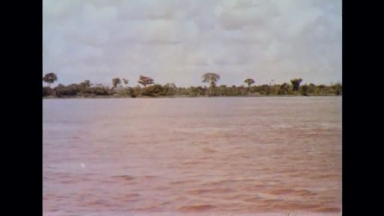 BRAZIL 1960s: Trees on shore of river. Ships and motorboat sailing on Amazon river.