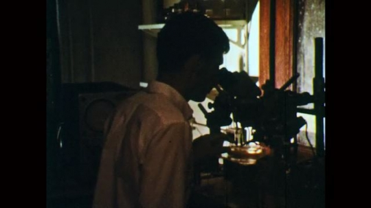 1970s: Man looks into microscope and adjusts specimen. Container of water beneath electronic equipment probing specimen. Man adjusts microscope. Pulses flash on screen. Man with eyes on microscope.