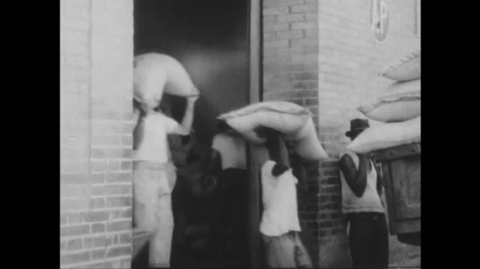 S?o Paulo, Brazil, 1930s: Men carry coffee beans on head, load into cart. Trucks loaded with coffee drive through street. Workers unload coffee in bed of truck at docks.