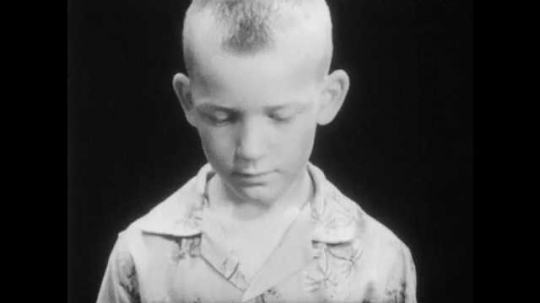 1950s: boy with buzz-cut and Hawaiian shirt looks down, stares up and talks.