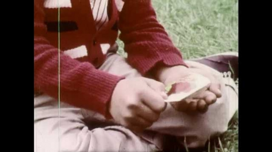 1960s: UNITED STATES: boy pours seeds into hand from packet. Boy looks at seeds in hand. Close up of seeds. Boy plants seeds in ground. Boy makes trench in ground