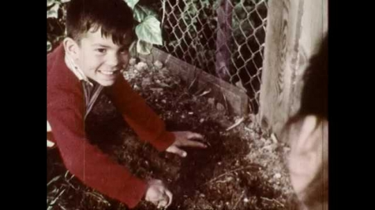 1960s: UNITED STATES: boy shows soil and seeds to mother. Lady smiles at boy, Boy takes mother's hand in garden. Lady walks to house with boy. Boy runs across garden
