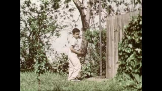 1960s: UNITED STATES: boy fills watering can with water. Boy sprinkles garden with water. Boy checks on seeds in ground