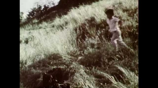 1960s: UNITED STATES: boy plays in garden. Boy rolls down grass. Boys play fight. Lady at sink in kitchen