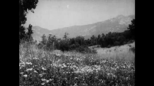 1940s: Flowered alpine meadow. River moving slowly in canyon. Periodical table of elements.