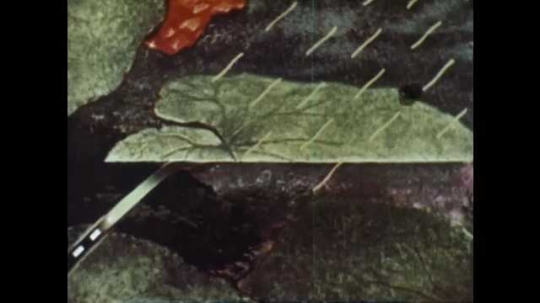 1950s: Illustrated cross section of leaf. Text appears over illustration. Animated arrows move upward through leaf. Animated arrows and lines move throughout drawing.