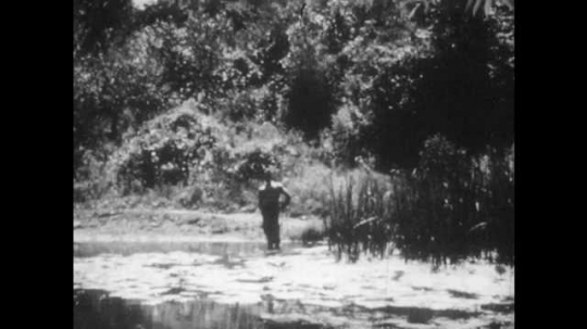 1950s: Boy stands on bank of pond, man and children approach, boy holds up stick with fish on it. Children walk around pond.