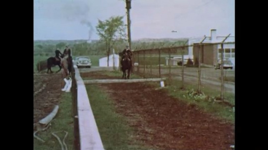 1960s: Horses jump over obstacles.  Policemen fall off horses.  Man yells.  Man does flip.
