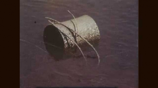1960s: Tin can in water. Old shovel and metal in water. Empty sunscreen tube and food wrappers on beach. Litter in a park as cars drive by.