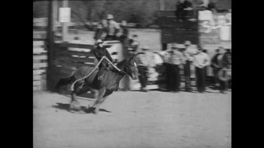 1950s: Man on horseback, horse begins bucking wildly, man falls off, horse continues to buck. Two men on horseback ride to bucking horse. Children sitting on fence cheer and wave hats, guns.