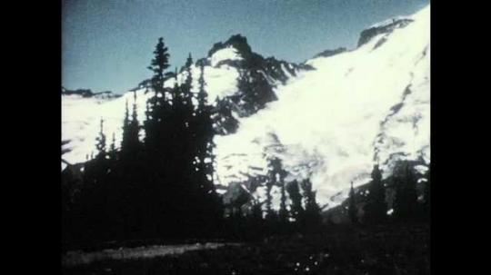 1950s: Trees.  Mountain.
