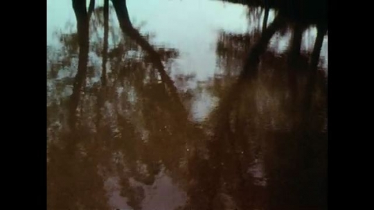 1970s: Trees stand around body of water in desert. Stone building and trees on edge of body of water. Water ripples in sunlight.