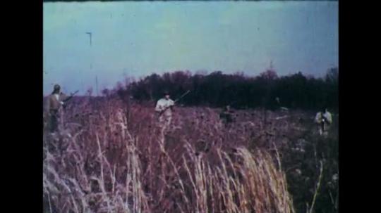 1950s: Men walking through field with rifles. Man ducks into trees.