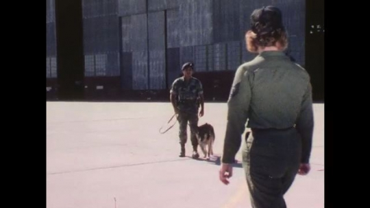 1970s: Man in camouflage jumpsuit walks across tarmac with dog. Uniformed men and women walk over and meet him. Group speaks to each other and walks away.