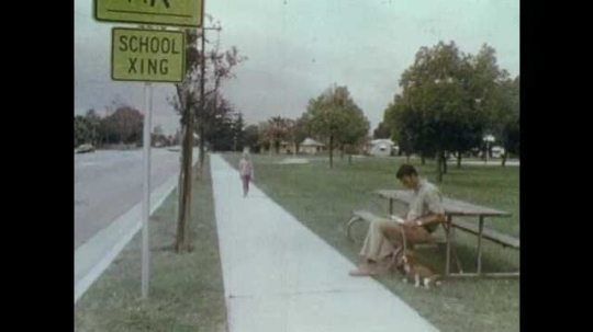 1970s: UNITED STATES: man sat on bench with dog. Boy offers candy to girl. Girl strokes dog. Toy bear plays drum