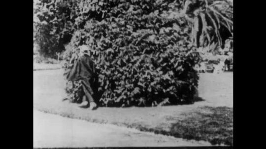 1910s: Man hides in bush. Angry mob  gathers at bush. Man in coat falls to ground. Man and woman peer from bush and talk. Mob stands at bush. Man and women go back into bush.