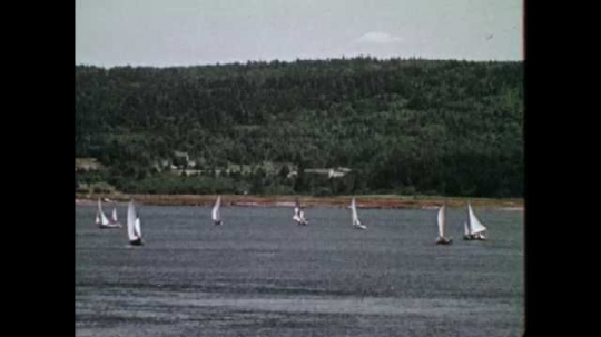 1950s CANADA: people paddle in water. Sailing boats on water. Leisure time activities. Man cuts down tree with chainsaw. Man pushes tree over