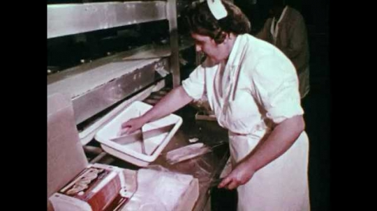 1950s CANADA: lady wraps fish in cellophane. Packaged product on conveyor belt. Man loads packaged fish onto shelf in factory