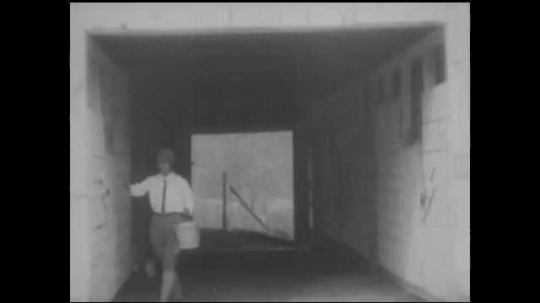 1930s: UNITED STATES: lady opens stable door. District nurses tend to horses. Lady brings horse out from stable. Dogs by stables