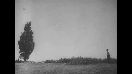 1940s: Man stands outside in field, in front of tree. Diagram of lines bounces off tree towards man