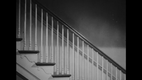 UNITED STATES: 1940s: boy slides down bannister with dog on back. Girl slides down bannister. Man catches children and dog.