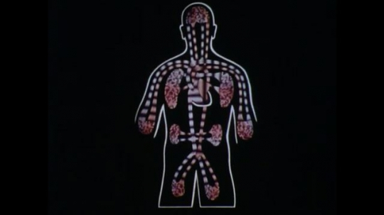 United States: 1970s: animation of organs inside human body. Animation of blood flow to and from organs.