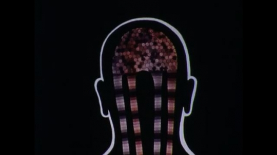 United States: 1970s: close up animation of blood flow to and from brain. close up animation of blood flow to and from kidneys. close up animation of blood flow to and from lungs.