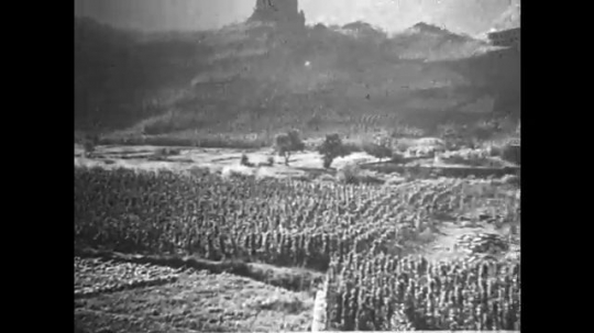 GERMANY: 1920s: view across vines in valley.