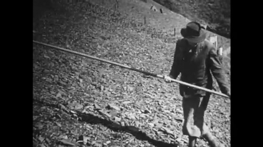 GERMANY: 1920s: man walks up slope with pole. Men drive stakes into ground.