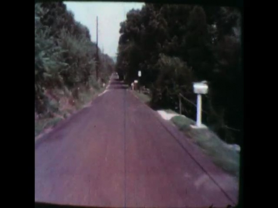 United States: 1950s: view of country lane from vehicle window. Person runs in front of vehicle on road. Car reverses into road. Car in dark after crash.