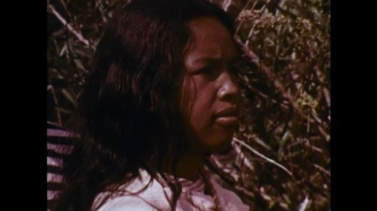 MADAGASCAR: 1970s: man talks to girl as man taken away. Man approaches girl from bush