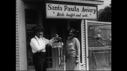 SANTA PAULA- CIRCA 1929: A man holding a birdcage and a woman stand in front of a bird store, beneath a sign that reads,