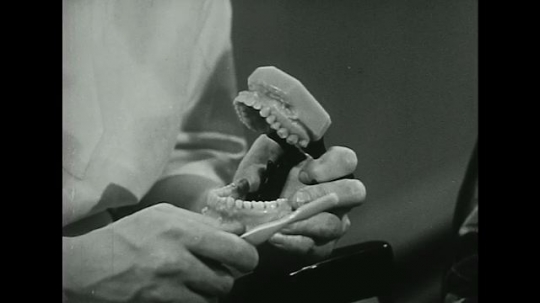 UNITED STATES 1940s-1950s :Proper toothbrushing technique is demonstrated by a dentist using a model.