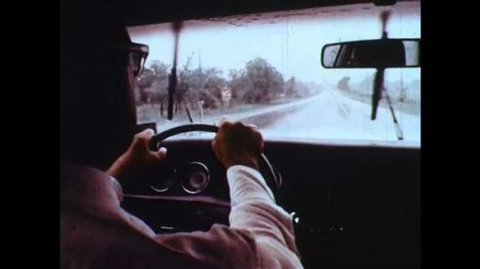 UNITED STATES: 1950s: man drives car in rain. Flower on ground. Flowers in breeze