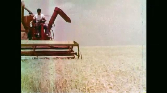 1950s: Boy drives combine. Silhouette of combine driving at dusk. Man drinks from cup. Long shot of combine in field. Man looks up. Pan to storm clouds.