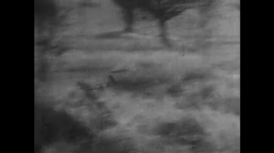 AFRICA: 1930s: antelope run from expedition vehicle. Zebra on grassland
